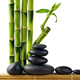 Eurographics Deco DG-DT4085 Glass Picture 30 x 30 cm Lucky Bamboo