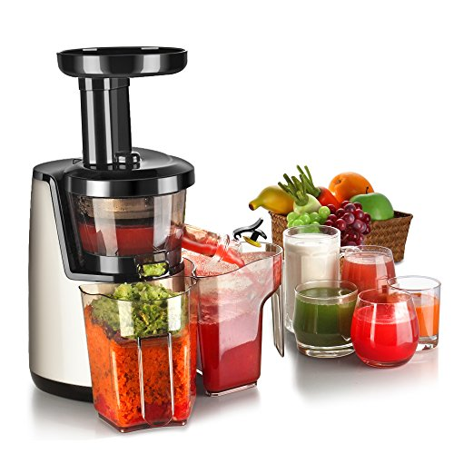 New Flexzion Cold Press Juicer Machine - Masticating Juicer Slow Juice Extractor Maker Electric Juic...