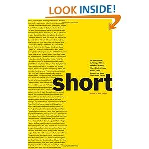 Essay modern piece prose sixteen story writer