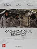 img - for Organizational Behavior: Improving Performance and Commitment in the Workplace book / textbook / text book