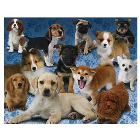 Cheap Hobbico Visual Echo 3D Effect Nintendo Nintendogs 100pc Lenticular Puzzle (B000YB8FSE)