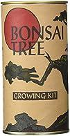 Jonsteen Growing Kit – Black Bansai T…