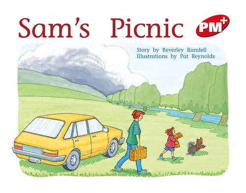 sams-picnic-pm-plus-lvl5-red-progress-with-meaning