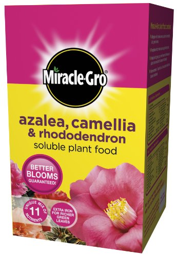 scotts-miracle-gro-azalea-camellia-and-rhododendron-soluble-plant-food-carton-1-kg