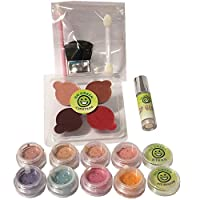 Make Up Kit - 17 Pieces includes Free Designer Bag, Cert. Organic Make Up for Girls, Real Make Up for Kids Pretend Play, Even for The Most Sensitive Skin, Best For Costumes and Parties, Made in US from Go Green Face Paint