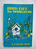 img - for Bird Life in Wington: Practical Parables for Young People book / textbook / text book