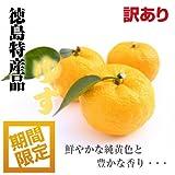 【爽やかな香気】徳島県産 ゆず 訳あり 9?14玉 1kg箱