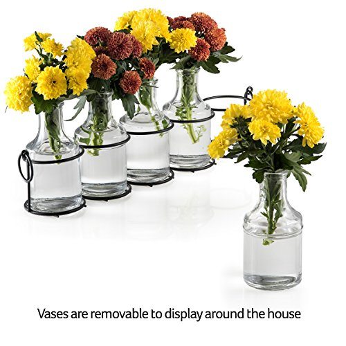 Set of 5 Clear Glass Mini Vases in Black Metal Rack, 5-Inches, Decorative Centerpiece for Flower Arrangements 4