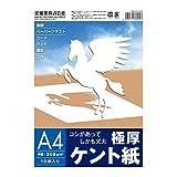 SAKAEテクニカルペーパー 極厚ケント紙 308g/m2 A4 10枚入 A4-GK308