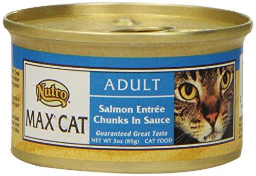 Nutro MAX CAT Adult Salmon Entrée