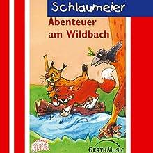Abenteuer am Wildbach (Schlaumeier 4) Hörspiel von Lisa Fuchs, Sven-Erik Tornow Gesprochen von: Martina Staat, Judith Süßenbach