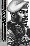 G.I. Joe 6: The Idw Collection (G.I. Joe: the Idw Collection)