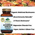 Mushroom Immune. 90 Kosher Capsules With 14 Powerful Mycelium Including Certified Organic Maitake - Reishi - Turkey Tail - Chaga - Cordyceps - Shiitake - Lions Mane