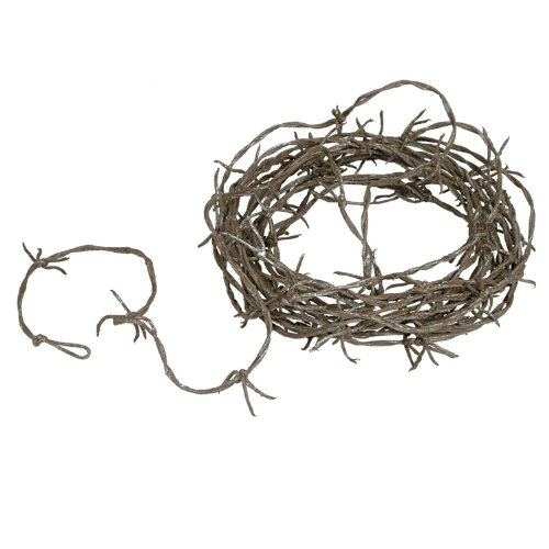 Beistle Rusty Barbed Wire Garland, 12-Feet