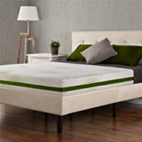 Sleep Master Memory Foam Value Priced/Economical 8-Inch Mattress, Queen
