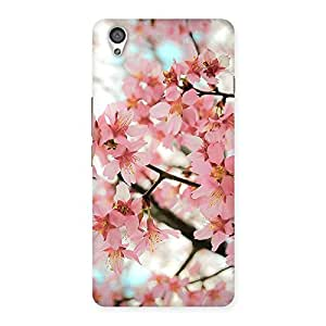 Delighted Cherry Blossoms Multicolor Back Case Cover for OnePlus X