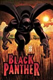 Black Panther: Who Is The Black Panther HC
