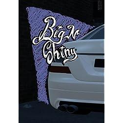 Big N Shiny