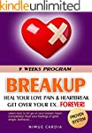 BREAKUP: 9 Weeks to Heal Your Love Pa...