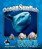 Ocean Sunfish (Underwater World)
