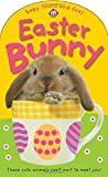 img - for Easter Bunny (Baby Touch and Feel) book / textbook / text book