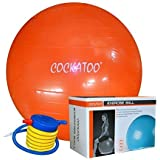 Cockatoo Anti-Burst Gym Ball ( 55 Cm To 95 Cm) With Foot Pump, Exercise Ball