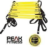 Peak Fitness - Échelle