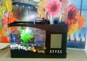 Mini plastic fish tank lovely fish bowl for Small plastic fish bowls