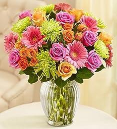 Flowers: Vibrant Blooms Bouquet Double Bouquet with Clear Vase by 1-800 Flowers- Flower Arrangements