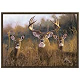CR Wildlife Rug - Buck Stops Here Nylon 37''x52''