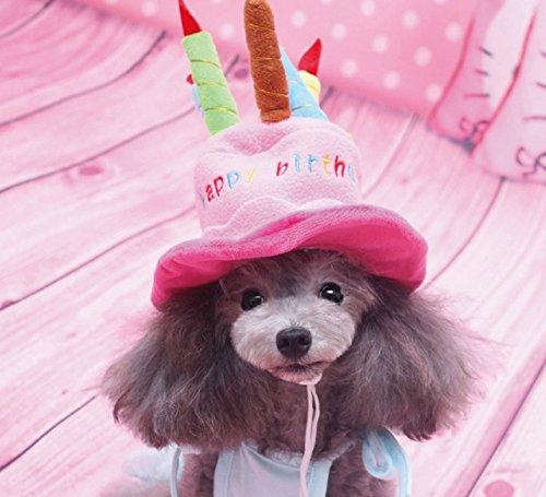 《 Princess★MARRON 》 ペットの誕生日に♪ 小型犬 猫用 バースデー ハット 犬 ペット ネコ いぬ コスプレ 帽子 誕生日 ケーキ型 【k・j】愛犬