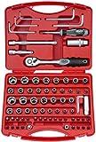 Famex Werkzeug 573-20 Steckschlüsselsatz mit Einsätzen und Feinzahnknarre, 10 mm (3/8-Zoll) und 6.3 mm (1/4-Zoll)-Antrieb, 74-teilig