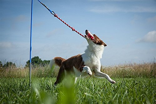 Tether Tug Dog Toy - Whip n Tug Rope Toy for Large Dogs - Tether Tug XL - Bonus Extra Rope with ball