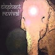 Elephant Revival: Amazon.de: Musik