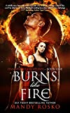 Burns Like Fire (Dangerous Creatures Book 1)