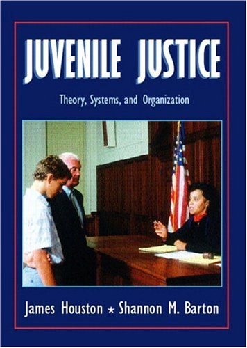 juvenile justice subsystems Professor szejner, section 03: this course provides an introduction, overview, and survey of the american criminal justice system and its subsystems- police, courts, juvenile justice, corrections, and victim witness assistance the class will examine the role, development, policies and management of the different public agencies and .