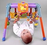 うちの赤ちゃん世界一 全身の知育メリー&ジム
