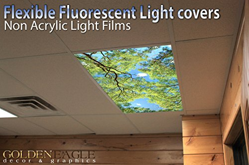 drop ceiling fluorescent decorative ceiling light cover skylight film