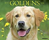 Just Goldens 2014 Wall Calendar