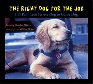 The Right Dog For The Job Iras Path From Service Dog To Guide Dog from Walker Childrens