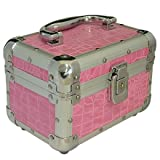 PINK METAL COSMETIC BEAUTY MAKE UP NAIL SALON BOX CANTILEVER VANITY CASE BOXby TOOLTIME