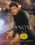 Angel The Casefiles, Volume One (v. 1) (0743449592) by Nancy Holder