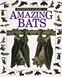Amazing Bats (Eyewitness Junior)