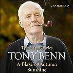 A Blaze of Autumn Sunshine   Tony Benn