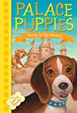 img - for Palace Puppies, Book Two Sunny to the Rescue book / textbook / text book