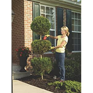 6-inch cordless hedge trimmer