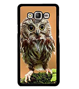 Printvisa Owl On A Tree Branch Back Case Cover for Samsung Galaxy On7::Samsung Galaxy On7 G600FY