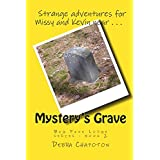 Mystery's Grave: Big Pine Lodge series - book 2 ~ Debra Chapoton