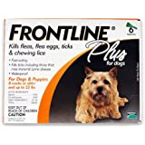 Pet Merial Frontline Plus Flea and Tick Control for Dogs and Puppies (6 Pack/Orange) Treatment, Lice Supply Store/Shop