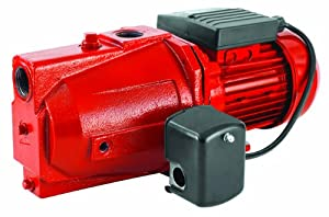 Water Pumps: Red Lion Water Pumps